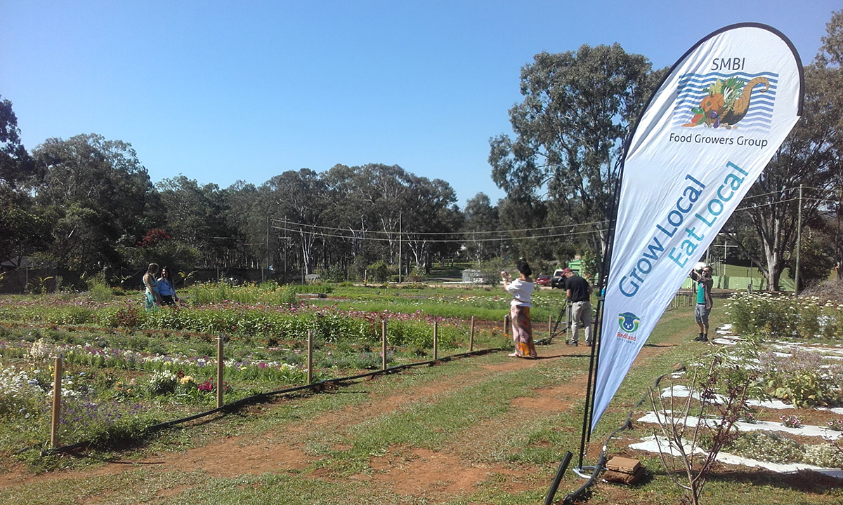 SMBI-Food-Growers-Group-food-growing-participation